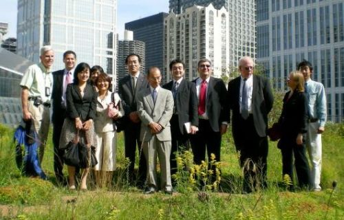 City Hall Green Roof 1.jpg